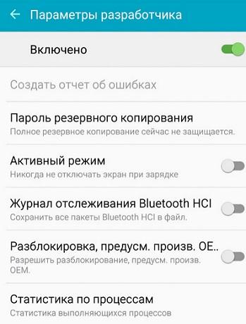 Параметры разработчика